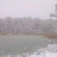 Озеро в снегу :: Ксю К