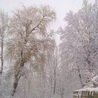 Зимушка зима :: Ксю К