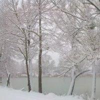 Первый Снегопад 2012 :: Ксю К