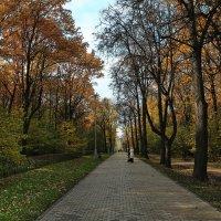 парк Воронцово .Москва, октябрь :: юрий макаров