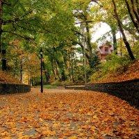 Вот и осень. :: Татьяна Беляева