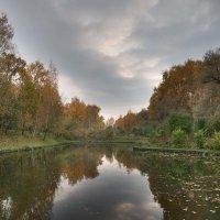 В парке :: Sergey Polovnikov