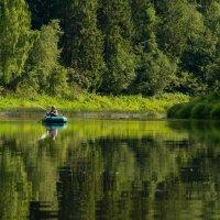 Речка Кунья :: Roman Demidov