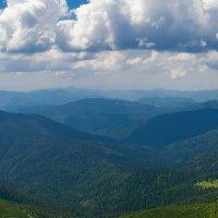 Вид с вершины г.Говерлы :: Светлана Л.