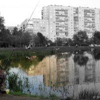 И в городе жить можно...) :: Сергей В. Комаров