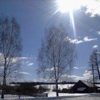 Зимний пейзаж :: Вика Мальцева