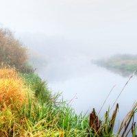 туман :: валерий попов