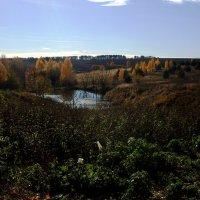 осень2 :: Елена Еремина
