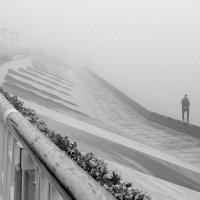 Прогулка в тумане :: Людмила Цвиккер