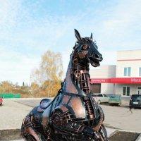 Железный конь ! :: Сергей Феоктистов