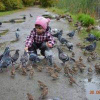Катя кормит голубей :: Андрей Z