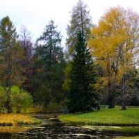 Осень в Екатерининском парке :: Денис Матвеев
