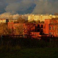 На закате :: Андрей Зайцев