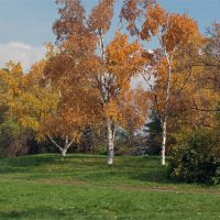 Sunny day :: Roman Ilnytskyi