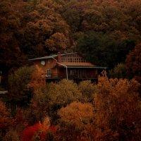 Домик в лесу :: Виктор Николенко