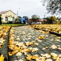 Осень :: Марина Шлык