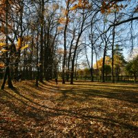 Один осенний день в парке (3) :: Маргарита