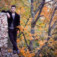 Где-то между деревьев :: Valentina Zaytseva