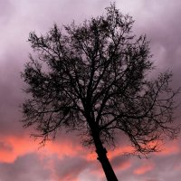 Кислотный закат Малевича-Лайтрумова :: Арина Зотова