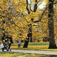 Осень в Коломенском. :: Юрий Шувалов