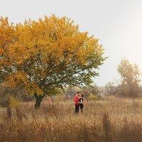 У одинокого дерева :: Сергей Урюпин