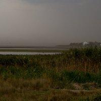 Витязевский лиман перед разгулом стихии :: Наталья Панина