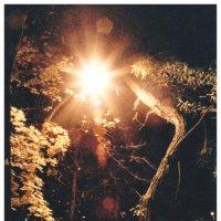 Ночь :: GRIGO D'uryt