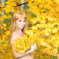 Осень :: Владимир и Тина Рябоненко