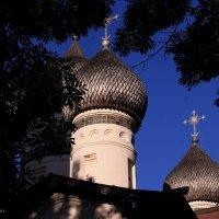 купола церкви Фёдора Стратилата :: Алена Сухарева