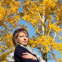 Осень :: Владимир Щукин