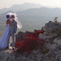 Вид с горы Коклюк в сторону Кара-дага :: Роман Пашко
