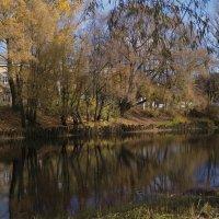Река Порусья. :: Sergey Serebrykov