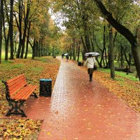 Дождливый сентябрь..... :: Людмила Комарова