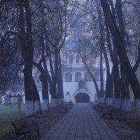 липовая алея :: Сергей Кочнев