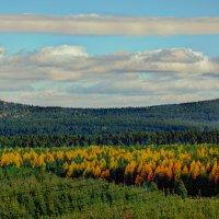 Уральские горы :: Дмитрий Марков