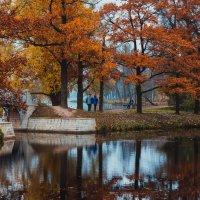 осень :: Olga Firsova