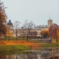 осенний парк Гатчина :: Olga Firsova