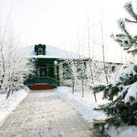 Зимняя сказка :: Светлана Ропина