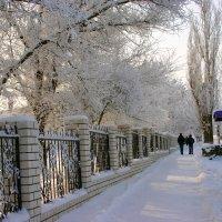 Зима :: Светлана Ропина