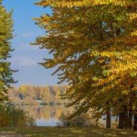 Осень... :: Наташа С