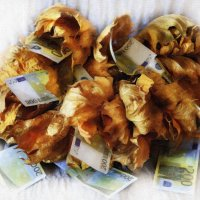 листья облетели :: юрий макаров