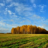 осень :: Алексей Бачаев