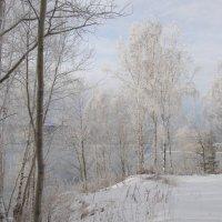 Ангарская зима :: Елена Наумова