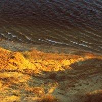 берег (р.Волга со стороны Тольятти) :: Алексей Медведев