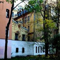Старая Петроградка :: Елена Разумилова