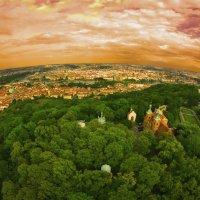 Зеленый бугор... :: АндрЭо ПапандрЭо