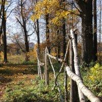 Просто осень... :: Владимир Буравкин