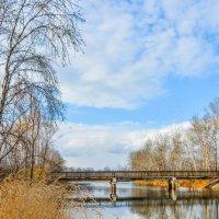 Осенний мостик :: юрий Амосов