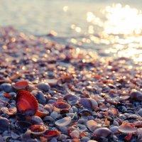 Утомленное солнце :: Тимофей Астахов