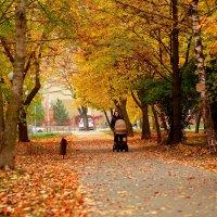 И снова осень... :: Nonna